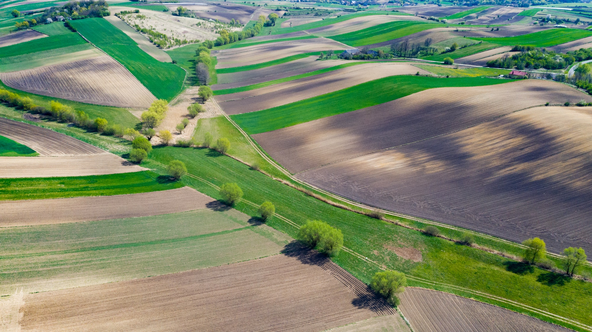 Geometric Farm Fields Shapes. Cultivated Countryside Scenic Landscape. Aerial Drone View